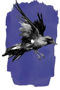 A crow  created for A Sacred Passing by artist  Siolo Thompson