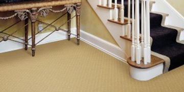 ​Services Residential Carpet Cleaning Your carpet is the biggest air filter in your home. By having