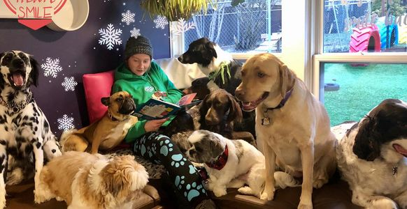 Story Time with the staff and dogs at Chris's Dog Hotel No Cages Luxury Pet Resort in Belleville.