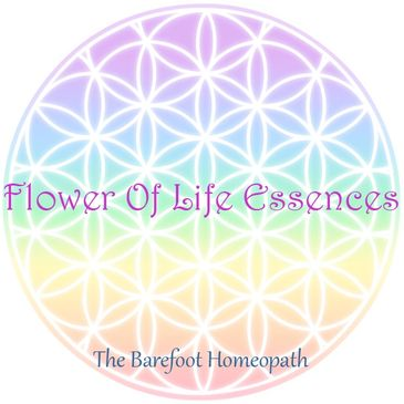 Flower Of Life Essence System