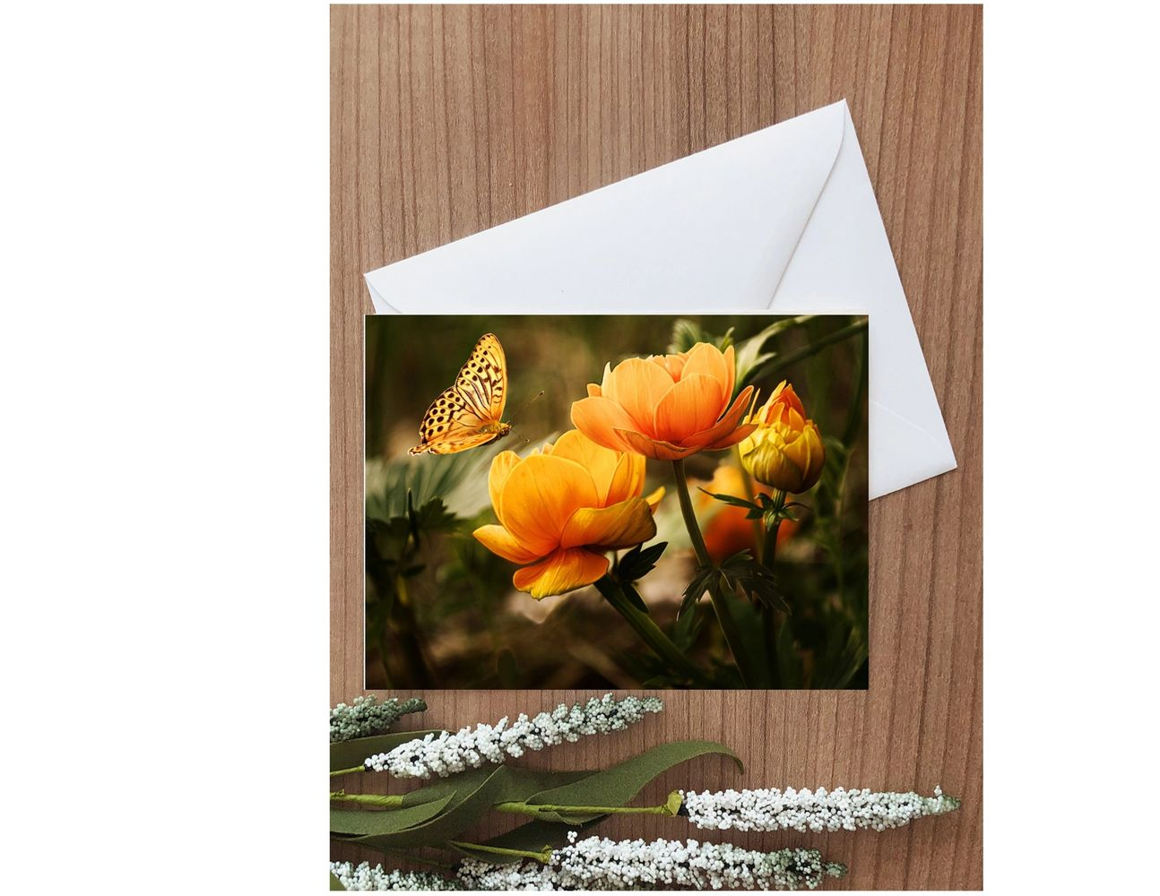 Orange flowers, orange butterfly,blank note card, nature card, butterfly card, card and envelope