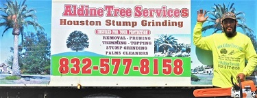 Aldine Tree Services Houston Stump Grinding