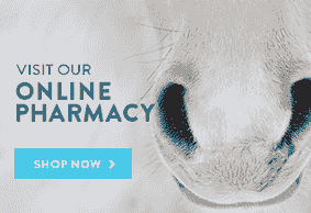 Online Pharmacy from Vetsfirstchoice