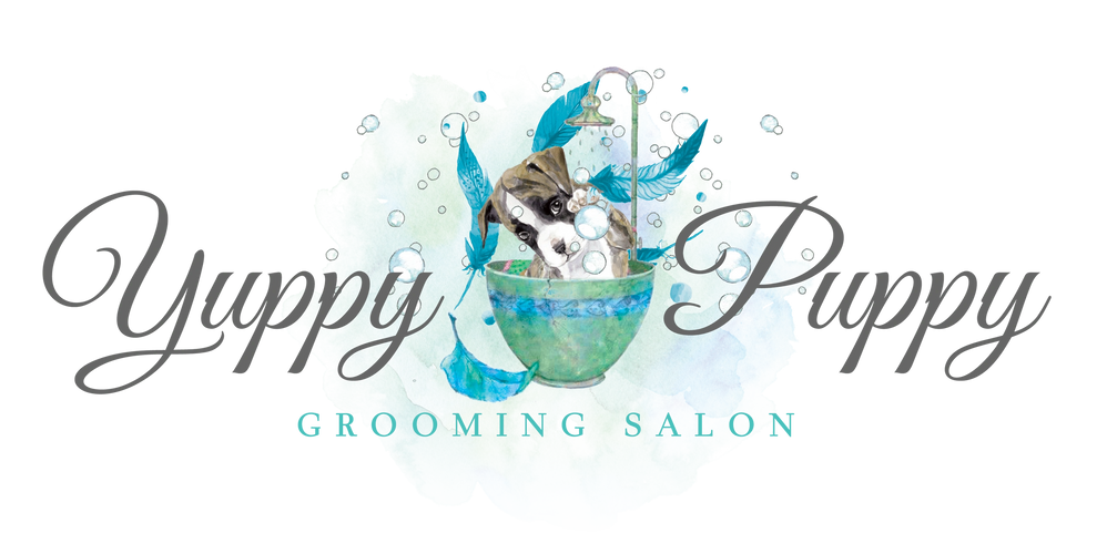 Yuppy Puppy Grooming Salon - Home