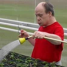 watering flowers in the greenhouse