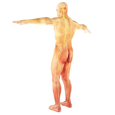 Sciatica pain is often associated with burning and tingling down one side of the buttocks and leg.