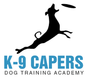 K9 Capers Dog training Academy