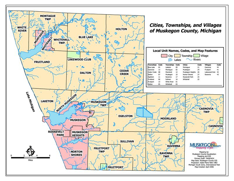 Muskegon County Social Determinants of Health