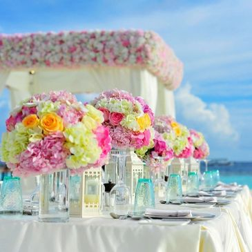 Party Wedding  Event  Planning