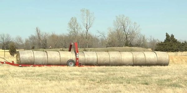THE 2EZ BALE MOVER HAY TRAILER STACKING BALES OF HAY IN A WIND ROW.