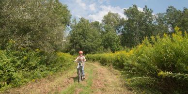 A young cyclists rides on a recently mowed trail.