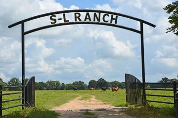 1156 +/- acre S-L Ranchin Cooper, TX sold by Southwest Ranch & Farm Sales.