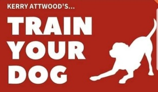 Train your dog-Kerry Attwood