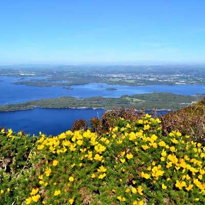 Killarney Lakes: Muckross and Leane