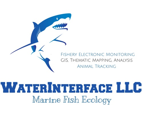 WaterInterface LLC: