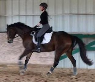 No stirrups exercise