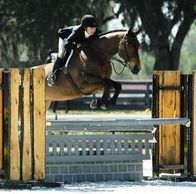 Hennessey son, Huh, jumping in a horse show