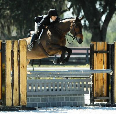 "Owner of ""Huh"" jumping a fence at a horse show"