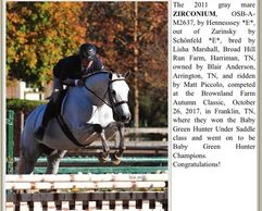 News article from the ATA about Zirconium, a grey mare, winning a hunter class