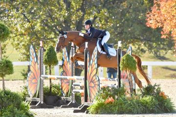 Shannon O'Hatnick jumping her mare, River, over a jump decorated with butterflies at a horse show