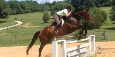 Hero, a bay gelding, jumping a fence with a rider