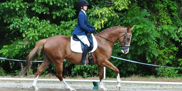 Shannon O'Hatnick riding a horse performing dressage movements