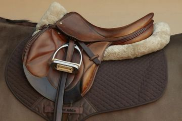 English jumping saddle and pads sitting on the back of a horse