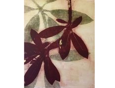 jane cooper, monoprints, monotypes, botanicals, landscapes, Katonah Museum of Artists' Association