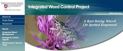 WSU's biological control project