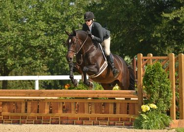 Dee Maki and Suess show in the hunters at the Kentucky Horse Park