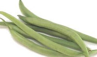 Novagrim French beans