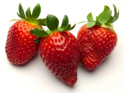 EU_strawberries_Netherlands