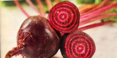 Beet Choices -Red Ace- Standard red beet. Sweet and tender, even when older. -Chioggia- A pre-1840 I