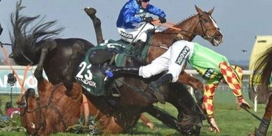 Photo of racehorse injured during race.