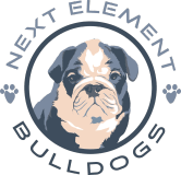 Next Element Bulldogs