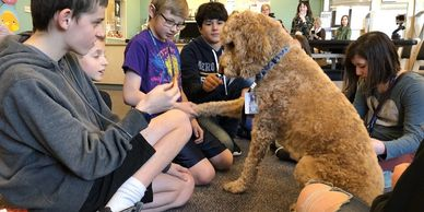 "News Details ""Paws to Read"" Library Summer Reading Program and OC Animal Care  OC Animal Care is"