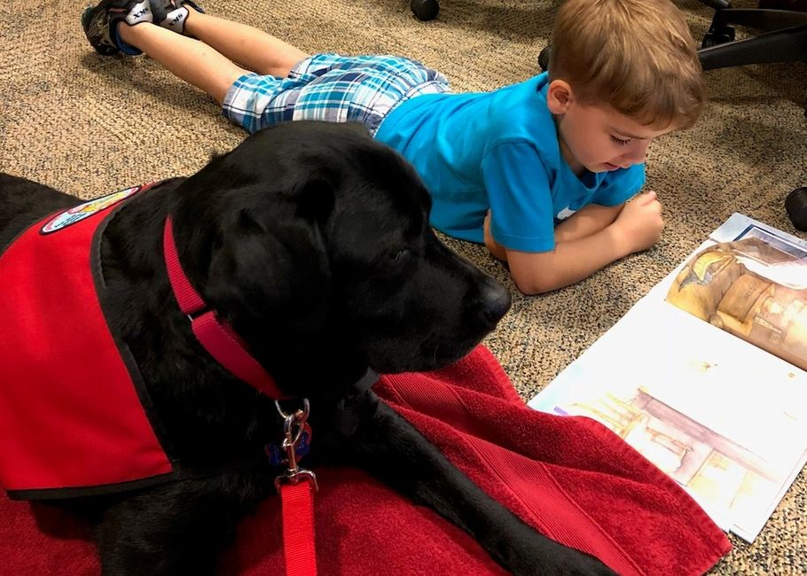 Dog laying with child while the child is reading a book.