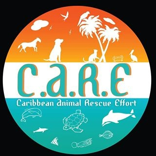 Caribbean Animal Rescue Effort (C.A.R.E.)