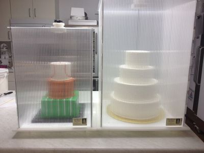 Medium  and large sized Cake Safe.    The best and safest way to transport a tiered cake.