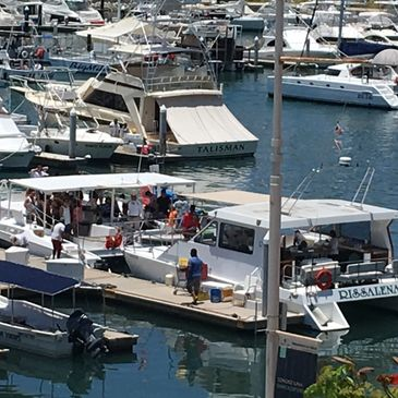 The Rissalena Catamaran is located in the lovely port of Cabo San Lucas.