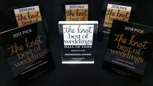 Toledo DJ Professional Sounds is chosen as one of the best DJ Companies in the U.S. by the Knot.