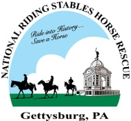 National Riding Stables Horse Rescue