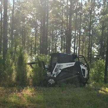 Land Clearing.  Forestry Mulching in Dothan Alabama