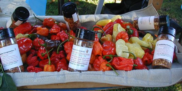 Our hot pepper blend and peppers on display at a festival