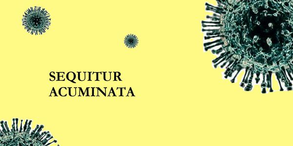 Cover page for Sequitur Acuminata, comedy series for TV about human love, epidemiology, and STI's.