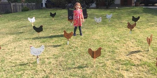 Chicken cutout flock invading the yard