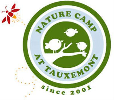 Nature Camp Logo
