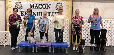 Macon Kennel Club Trials September 2019