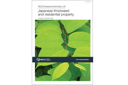 RICS - Japanese Knotweed and residential property information paper