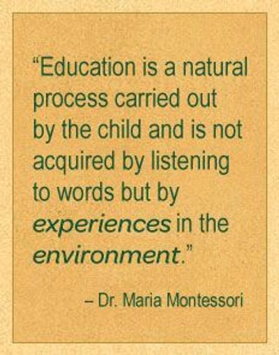 about us young scholars montessori school